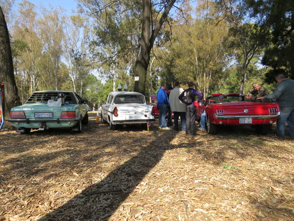 Fossa in good company, our 3.0 Ford Cortina and two 'Stangs